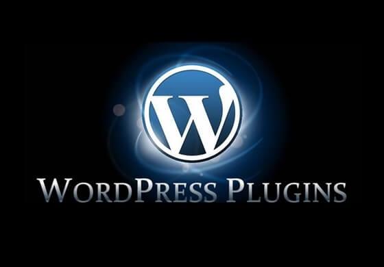 Instalace a nastavení pluginů/šablony WP