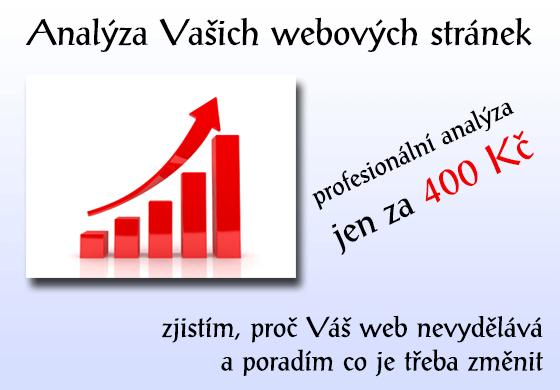 Profesionální analýza webových stránek