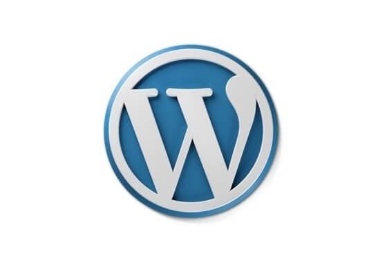 Zajistím doménu, hosting a instalaci Wordpressu