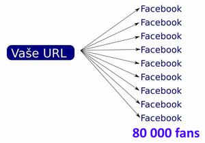 Vložení Vašeho odk. na facebook stránky s více 80 000 liků