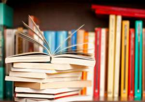 25 rozborů knih k maturitě