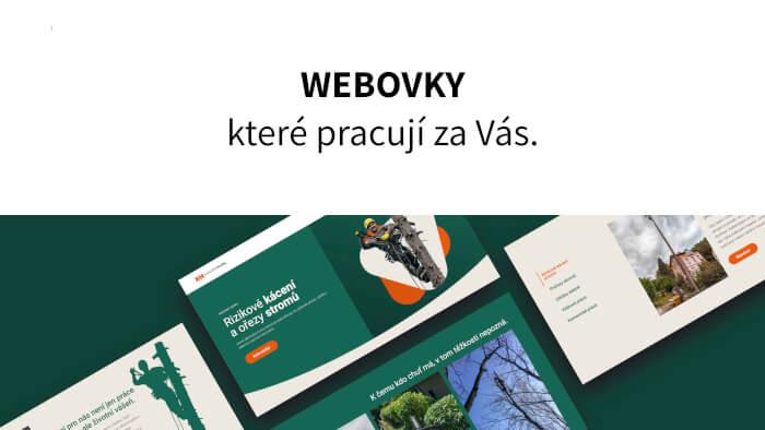 Vytvořím kompletní webové stránky ve WordPress