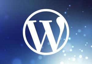 Nainstaluji vám Wordpress na váš web a optimalizuji rychlost