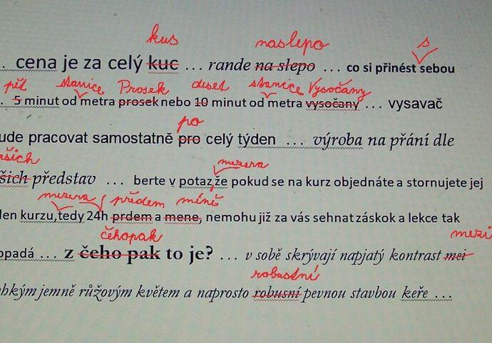 Jazykové korektury diplomových prací