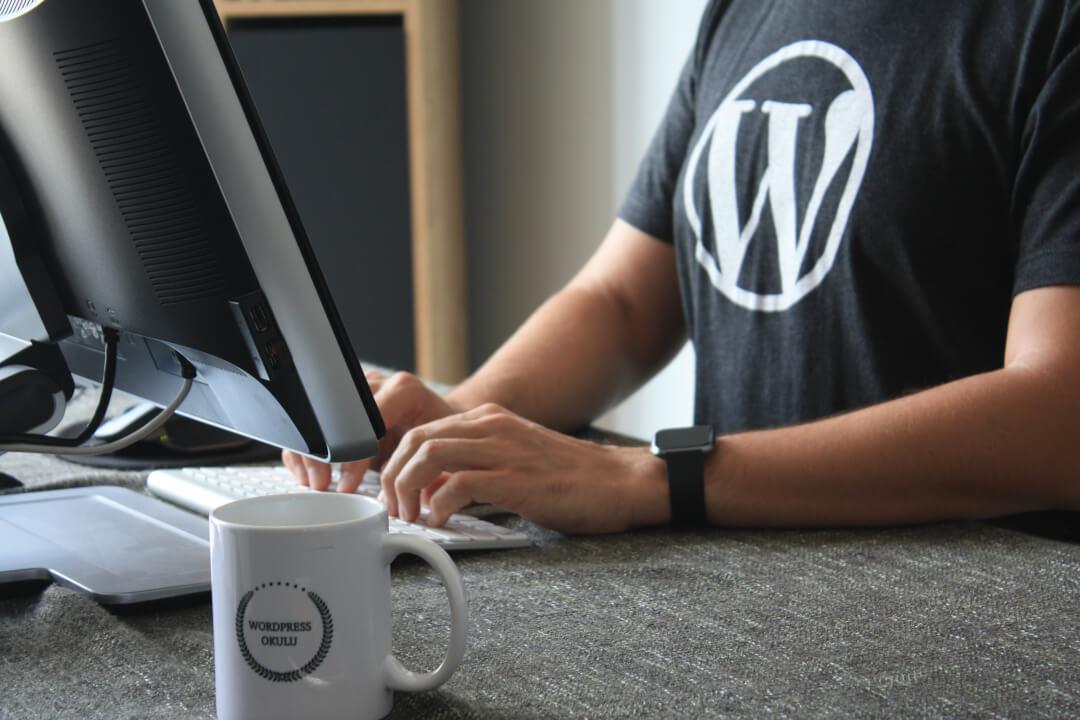 Tvorba webových stránek Wordpress + možnost propagace PPC