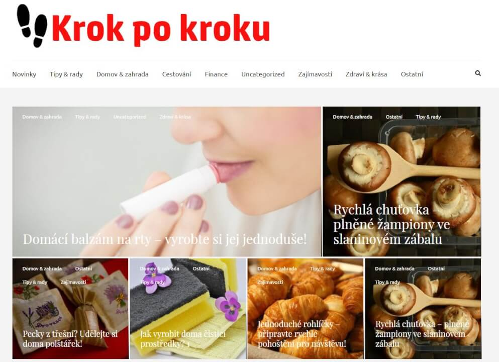 Publikace na Krokpokroku.eu
