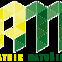 PatMat